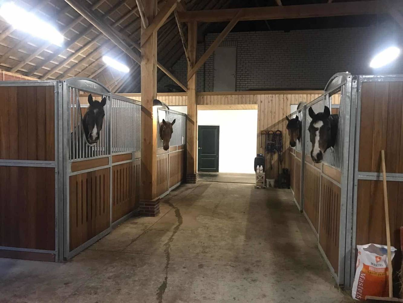 led paardenstalverlichting